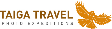 Taiga Travel