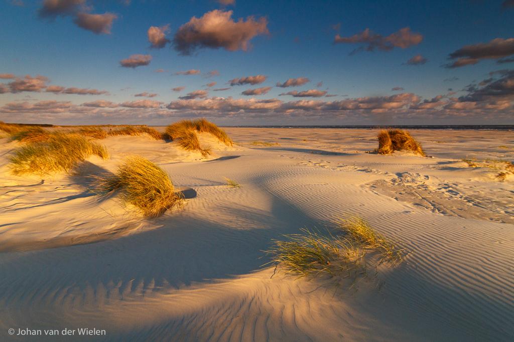 Embryonale duinen bij laagstaand zonlicht