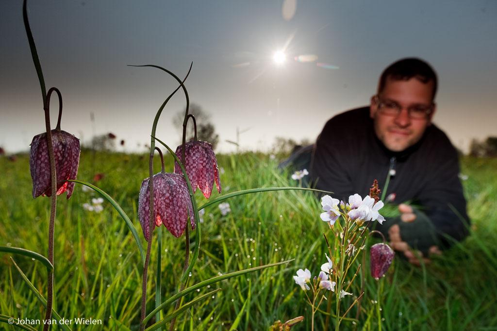 zelfportret bij mijn geliefde kievitsbloemen