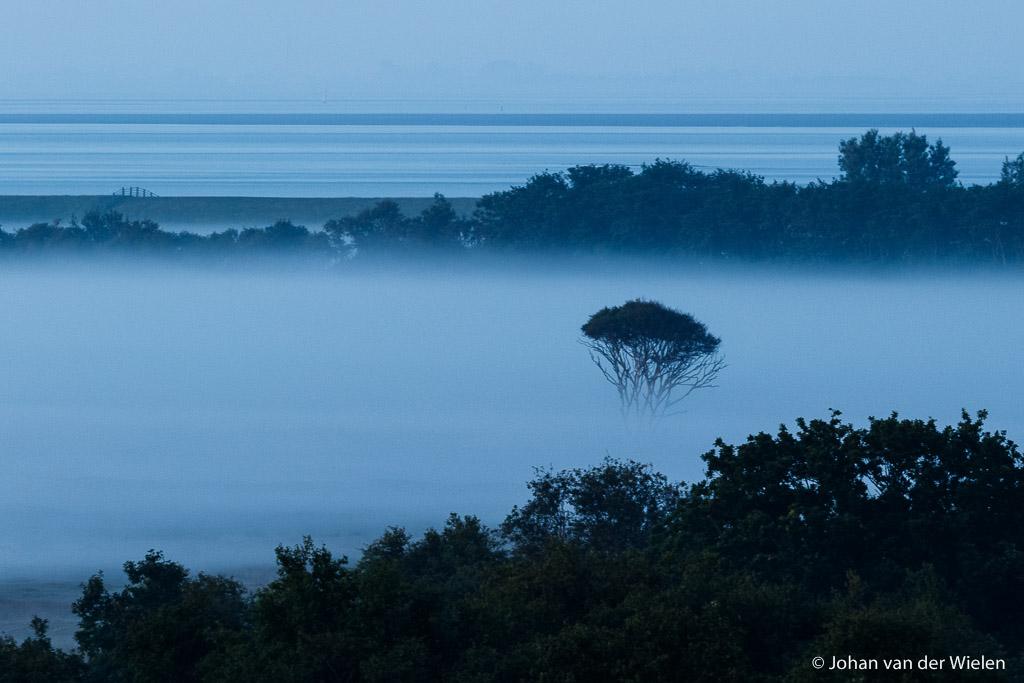 Het blauwe uurtje vol ochtend mist, Schiermonnikoog.