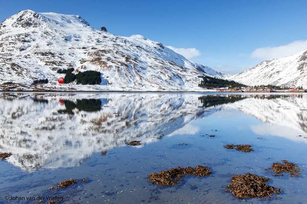 Gevonden op Lofoten: rudolph the red nosed reindeer!