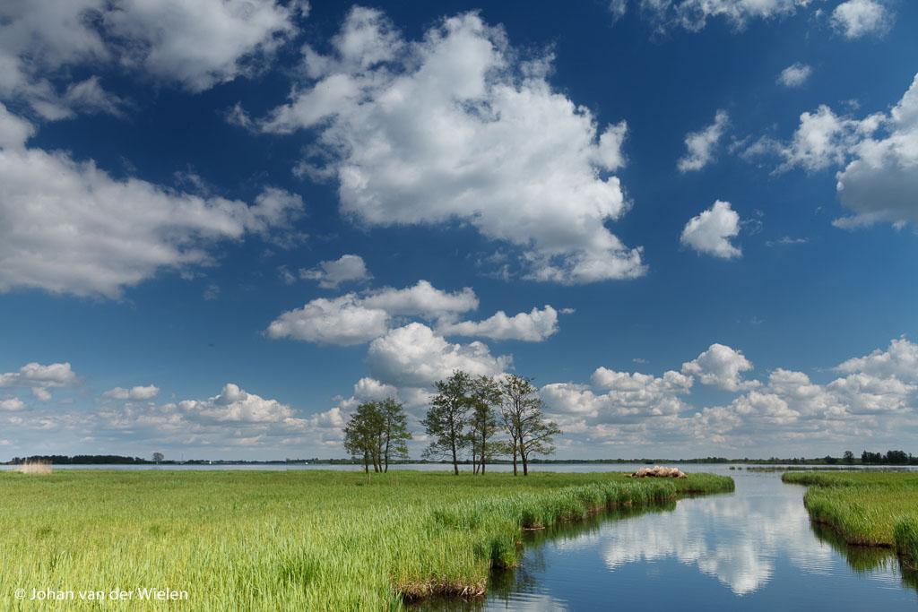 Uitgestrekt landschap met het nog lage riet, Hollandse wolkenluchten.