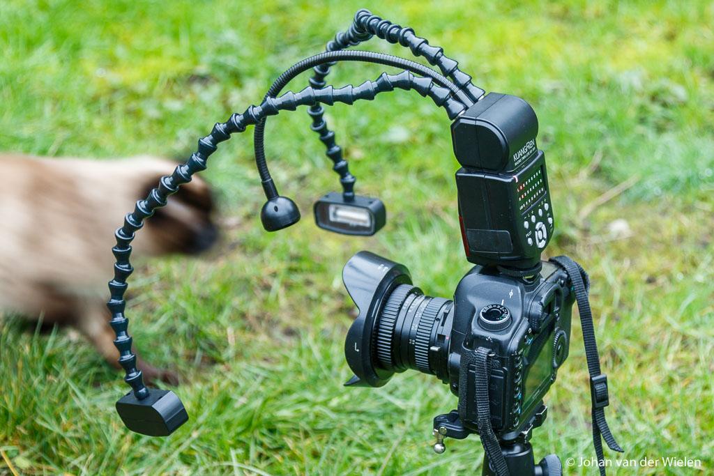 Opstelling: camera, venus 15mm, KX-800 , flits en ... poes