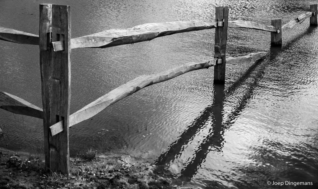 Een hek bij een drinkpoel voor grote grazers.  Foto: Joep Dingemans