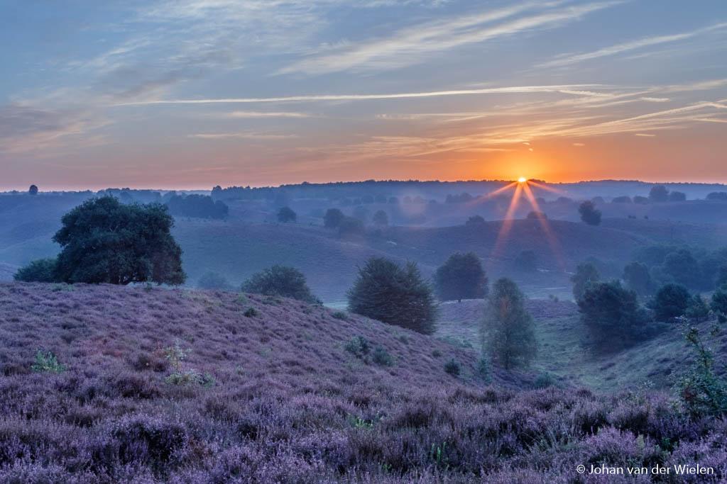 Het allereerste zonlicht over de heuvel, eerste resultaat van de dagwacht