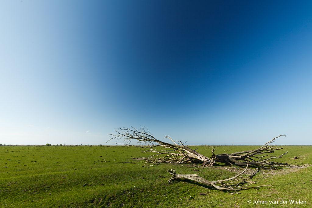 Té sterk polarisatieeffect door combinatie van extreme groothoek en luchtvochtigheid. Wees hierop bedacht!