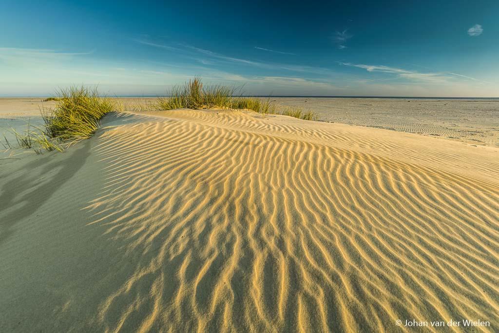 Het warme strijklicht over de ribbels op de embryonale duinen