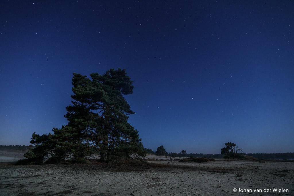 De voorgrond wordt belicht door de volle maan, daardoor zijn slechts weinig sterren zichtbaar