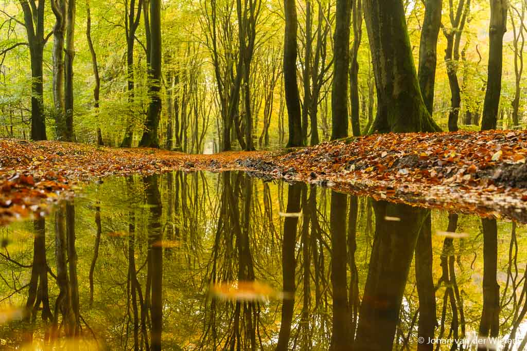 Nog geen zonnestraal te zien maar wel een schitterende plek… het lijkt wel een meer maar in werkelijkheid is het maar een plasje water op het pad