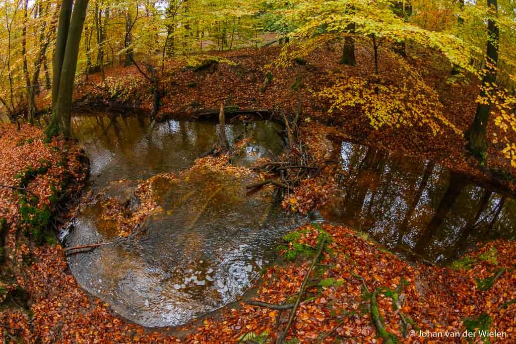 Op deze plek in de beek heeft een stapel takken ervoor gezorgd dat het water door een klein gaatje wordt geperst, daardoor snel gaat stromen en hele kom heeft uitgesleten…