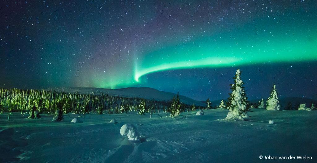 één kans... en die lukt! besneeuwde bomen met noorderlicht