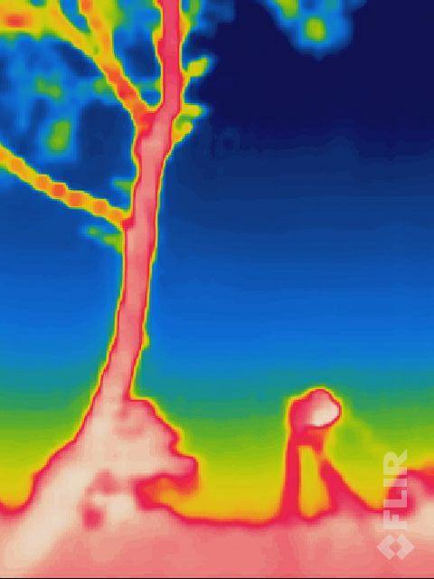 dinsdag 29-11, 02:30: een warmte beeld van één van mijn camera's in actie. Hij geeft een temperatuur van -18 aan op de statief poten.