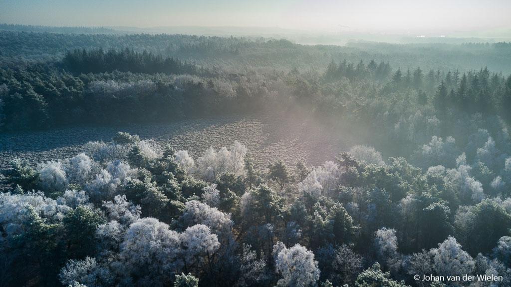 Berijpte bomen met grondmist… een blikveld zoals je anders niet kan zien