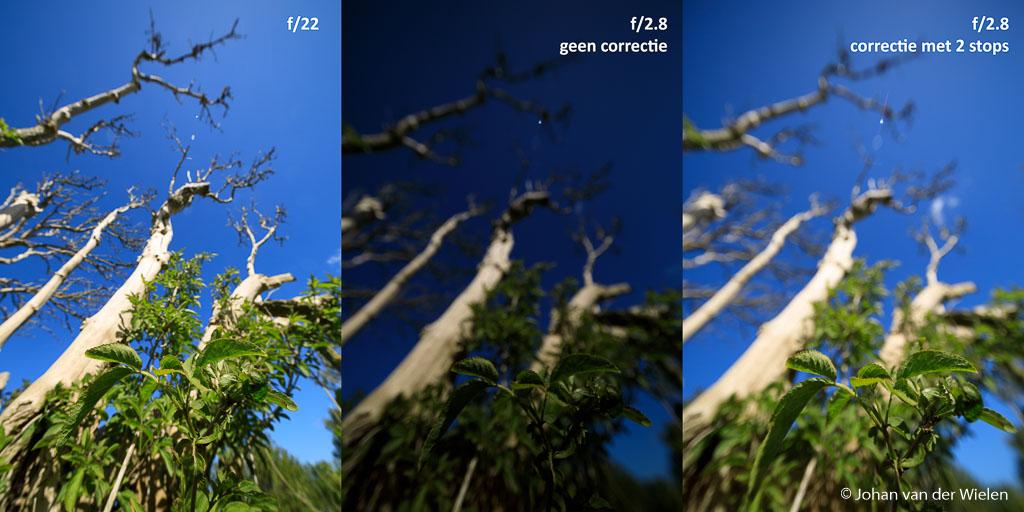 In dit voorbeeld zie je het verschil tussen een foto op f/22 en op f/2.8. Ik begon met f/22 maar moest de camera op -1 2/3 zetten voor goede belichting. Toen ik daarna terugging naar f/2.8 bleek de foto ineens veel te donker (wat ook logisch was gezien de zware onderbelichting). Om de belichting gelijk te krijgen aan f/22 moest ik terug naar +2/3 (dus 2 volle stops verschil!). Dit is best opvallend.