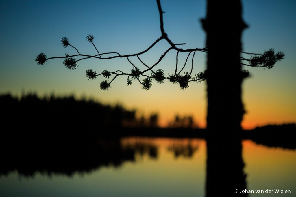 Creatief met wolkeloze hemel en avondkleuren