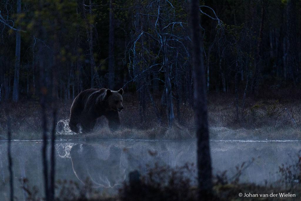 Rond middernacht plast een grote man door het moeras