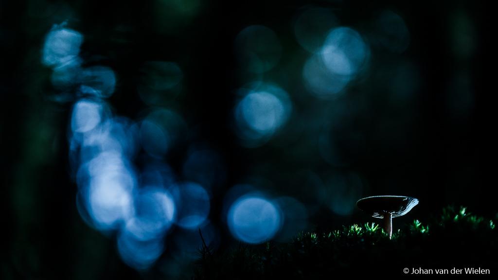Donker sfeervol beeld met lichtaccentje door een draadloze flits van rechts