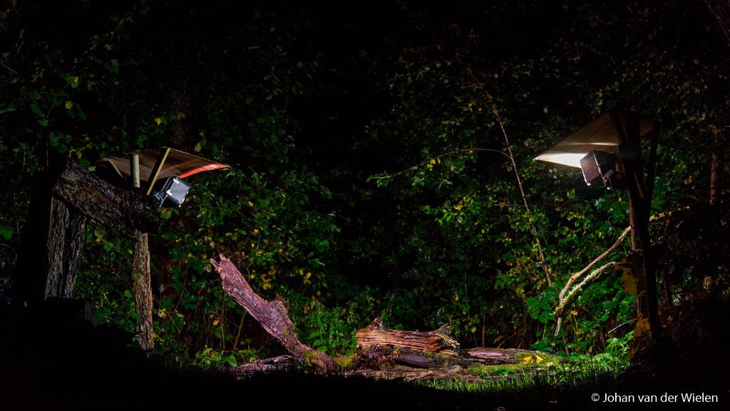 Het uitzicht van de komende uren… de beide lampen bieden voldoende licht voor fotografie