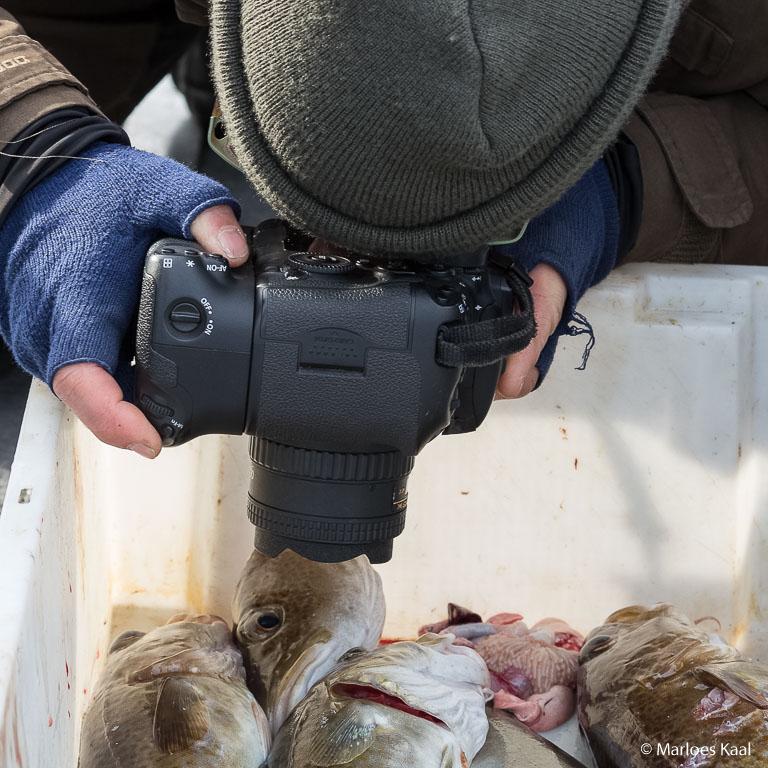 Geen lens geeft zo duidelijk aan wat de bedoeling is als een 'fisheye' lens