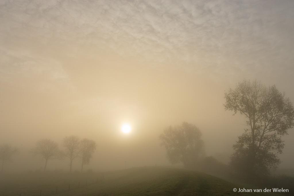 De vele ochtenden die ik in de mist ov er de dijk heb gezworven.