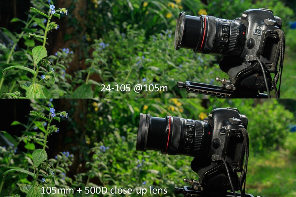 24-105mm objectief op 105mm met 500D close-up lens: het verschil in minimale scherpstelafstand met en zonder voorzetlens.