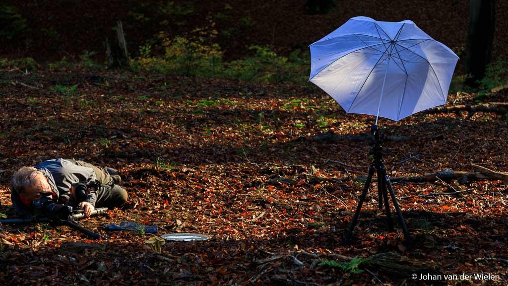 Zelfs in de herfst met zachter licht en zelfs in het bos... kan hij nog van pas komen!