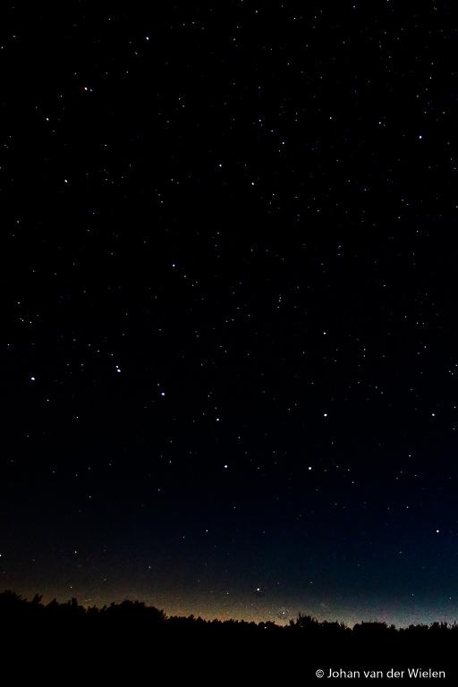 Hoe vind je de poolster in een nachtelijke hemel vol sterren?